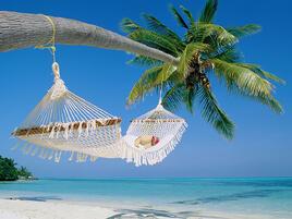 Annual Plan Meet Summer Slump