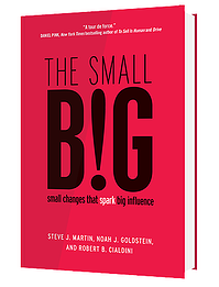 thesmallbig-bookcover1