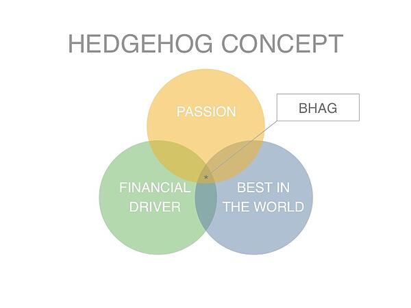 Hedgehog_BHAG