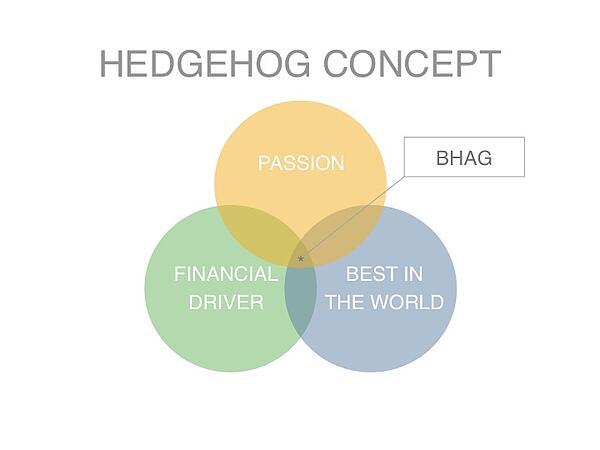 Hedgehog_BHAG