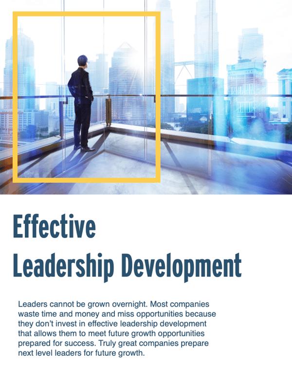 Leadership Development Infographic Executive Coaching