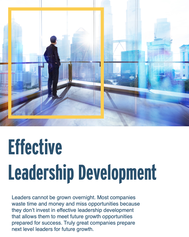 Leadership Development Infographic Executive Coaching