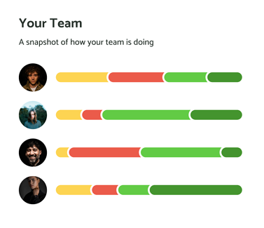 your-team
